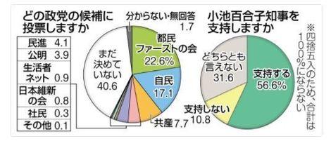 どの政党に投票するか.JPG