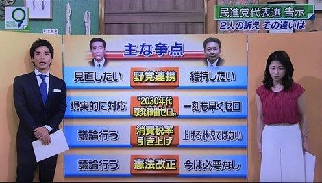 民進党代表 争点.jpg