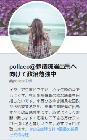 pollaco自己紹介.PNG